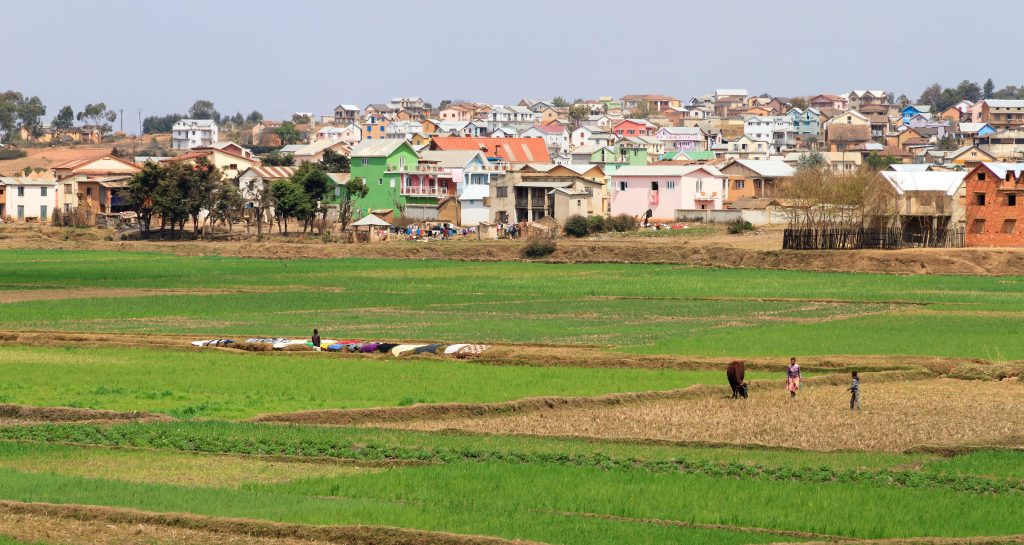 Typical view of a small town in Madagascar with rice fields